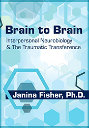 Brain to Brain: Interpersonal Neurobiology & The Traumatic Transference by https://lobacademy.com/