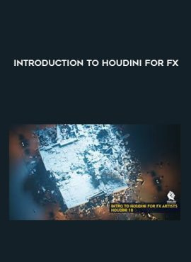 INTRODUCTION TO HOUDINI FOR FX by https://lobacademy.com/